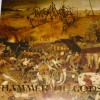 "Angelcorpse - Hammer of the Gods (12"" Pic LP)"